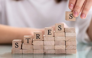 blocks spelling out the word stress which is a cause of bruxism